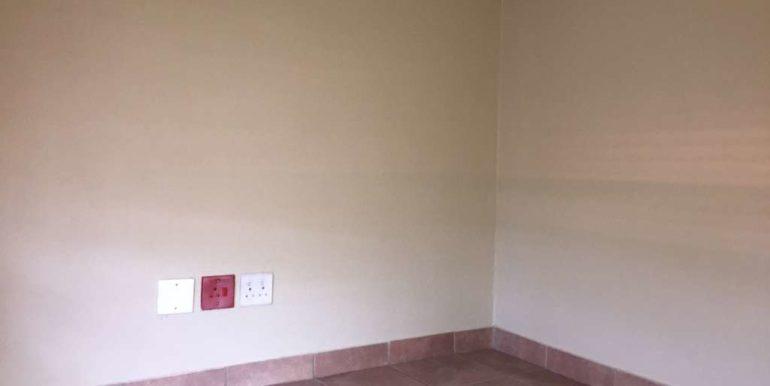 Johnlee Properties (41)